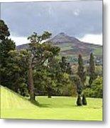 Green Green Garden And Mountain Metal Print
