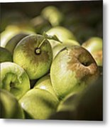Green Jewels Metal Print by Caitlyn  Grasso