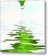 Green Leaf Over Water Reflection Metal Print by Sandra Cunningham