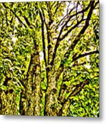 Green Leafy Trees Metal Print