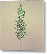 Green Leaves Metal Print by John Krakora