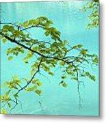 Green Leaves Over Blue Water Metal Print