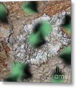 Green Moths Metal Print