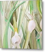 Green Onions Metal Print by Debi Starr