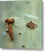 Green Outer Bark Metal Print