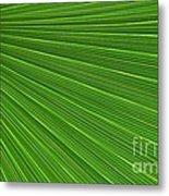 Green Palm Abstract Metal Print