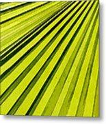 Green Palm Frond Metal Print
