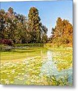 Green Pond And Tree Metal Print