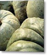 Green Pumpkins Metal Print
