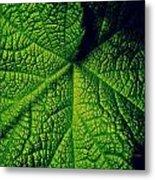 Green Ribbons Of Life Metal Print