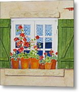 Green Shutters With Red Flowers Metal Print