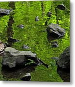 Green Stream Metal Print
