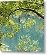 Green Trees Over Blue Water Metal Print