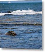 Green Turtle Surf Metal Print