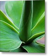 Green Twist Metal Print