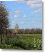 Green Wheat Field With Blue Sky Metal Print