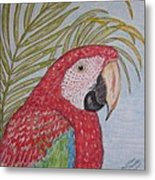 Green Winged Macaw Metal Print
