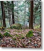 Green Woodland Beauty Metal Print