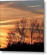 Greenfield Indiana Metal Print