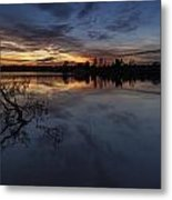 Greenlake Sunset With A Fallen Tree Metal Print