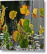 Greens On A Pond Metal Print