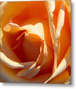 Greetings From Texas Featured 2 Metal Print
