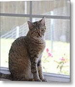 Gretchen Sitting In The Window Metal Print