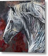 Grey Andalusian Horse Oil Painting 2013 11 26 Metal Print