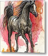 Grey Arabian Horse 2014 01 12 Metal Print