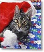 Grey Tabby Cat With Santa Claus Hat Metal Print