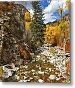 Grizzly Creek Cottonwoods Vertical Metal Print