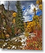 Grizzly Creek Vertical Metal Print
