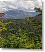 Gros Morne Metal Print