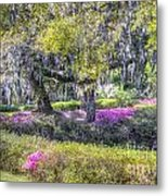 Grounds Of Middleton Metal Print