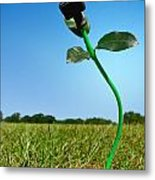 Growing Green Energy Metal Print