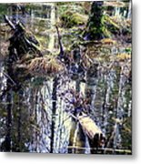 Nature Is Growing Up And Sinking Down  Metal Print