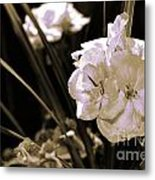 Growth II Metal Print by Yanni Theodorou