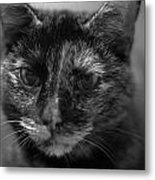 Grumpy Girl Metal Print