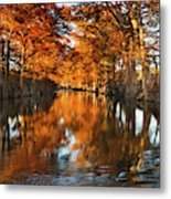 Guadalupe River, Texas Hill Country Metal Print