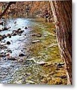 Guadalupe River View Metal Print