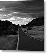 Guanica Dry Forest B W 1 Metal Print