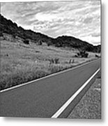 Guanica Dry Forest B W 2 Metal Print