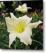 Guardian Angel Daylilies Metal Print