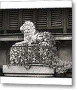 Guardian In Black And White Metal Print