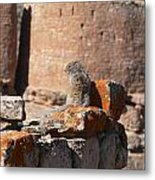 Guardian Of Hovenweep Metal Print