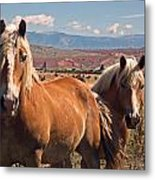 Guardians Of The West Metal Print