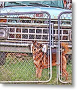 Guarding The Ford Metal Print