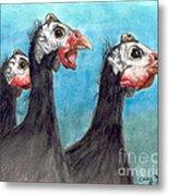 Guinea Hen Rooster Trio Farm Ranch Animal Art Metal Print