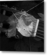 Guitar Autumn 4 - Bw Metal Print