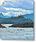 Gull Island Rookeries In Kachemak Bay-alaska Metal Print